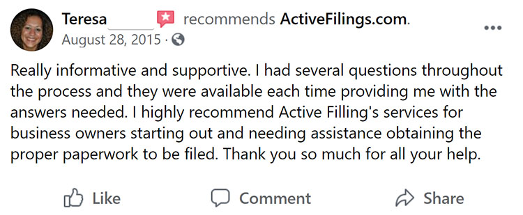 Active Filings Facebook Review 2